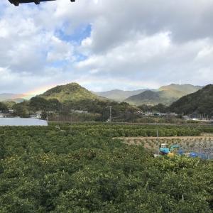 虹がかかったよー!