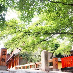 京都・夏の祇園白川