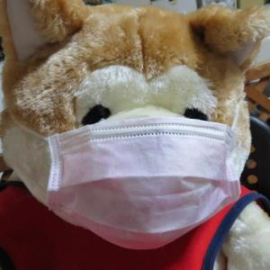 マスク保護プラケットと肛門周囲腺腫の記事