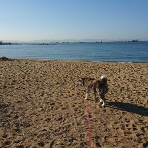 芦屋の浜お散歩とパン屋さ~ん☕