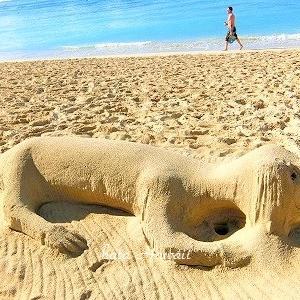 Hawaii☆ワイキキビーチに謎の?♡