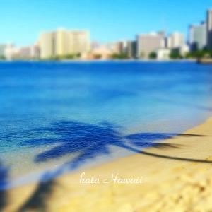 Hawaii☆ありがとう♡良いお年を♡