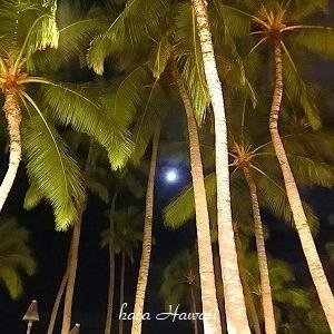 Hawaii☆満月とデューク様♡