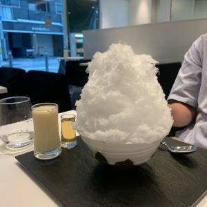 これぞ日本のかき氷!ふわっふわの氷が美味しすぎー♡