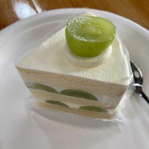サクットのシャインマスカットケーキ