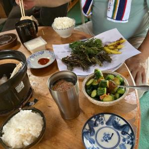 今日のランチ 土鍋ご飯と天ぷら^ - ^