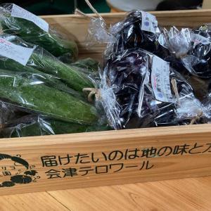 今日もリオリコ農園の野菜を出します♪
