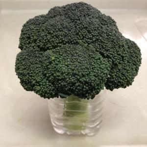 我が家流 野菜を長持ちさせる一工夫