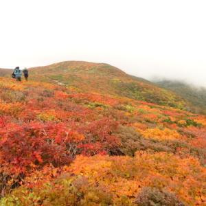 栗駒山と日光。2020紅葉の旅。