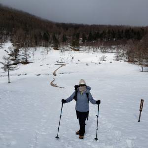 雪山ハイク入門の入笠山へ。