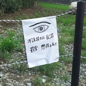 描かれた「目」