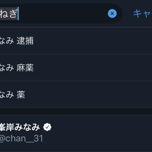 【悲報】AKB48峯岸みなみのTwitter検索候補が酷すぎる・・・【風評被害】