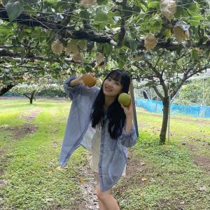 【朗報】AKB48さん、ガチで「とっとりの梨食べたいし(大使)」に任命される。任命式の開催も決定!!!