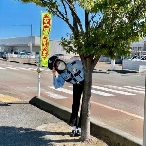 10月2日(土)BSNテレビ「なじラテ。にいがたグルメ大捜査」に横山実郁が出演!