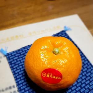 札幌市立K小学校様 家庭教育学級にて「みかん洗剤ワークショップ」行いました
