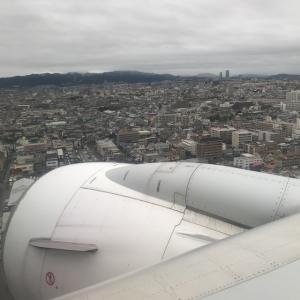 【JAL】久しぶりのフライト
