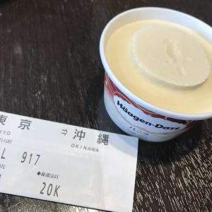 【JAL】羽田空港国内線ファーストラウンジで見つけたハーゲンダッツ