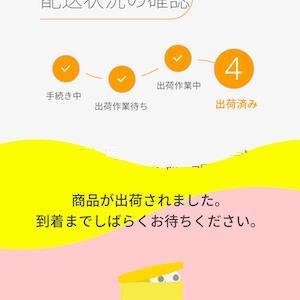 【モバイル】ahamoはMNP期限内にギリギリセーフ!