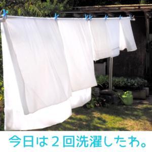 レーコメモ:「今日(きょう)は2回洗濯(にかいせんたく)したわ。」