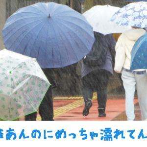 レーコメモ「傘あんのにめっちゃ濡れてん」英語&京都弁