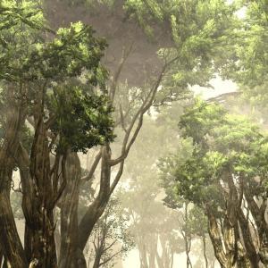 【FF14】ラケティカ大森林