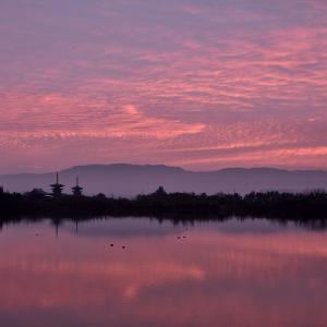 如月の朝焼け @ 薬師寺の見える池にて