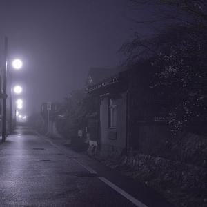 霧未明 白梅の咲く古都の道