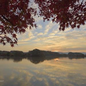 晩秋の朝 @ 水上池
