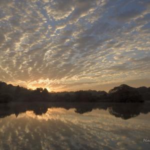 寝坊して間に合わないのに それでも飛び出した夜明けの写真  @ 水上池