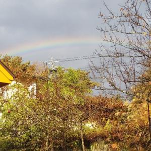 虹の前は大荒れの原村〜と、お土産の話