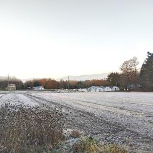 八ヶ岳に3回目の雪が降った朝〜極寒くって!