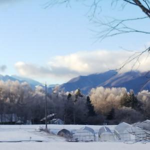 原村は朝起きたら〜雪の中