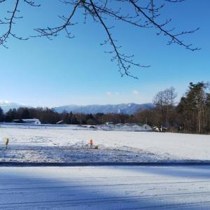 雪だあ〜朝起きたら外は真っ白で
