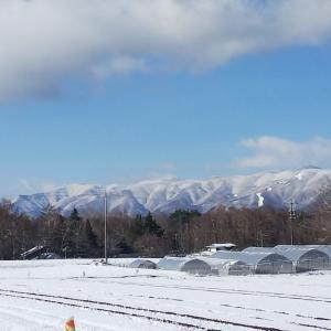 春の雪〜すぐに溶けちゃった原村の雪
