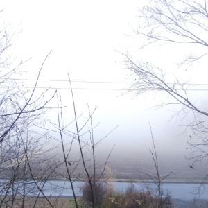 雲の中の原村〜虹と〜なぜかピカチューと!