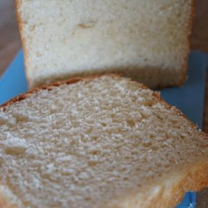 食パンその後 庭師さんが来る