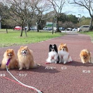 恒例秋の伊豆旅行 友達との再会の旅 その4