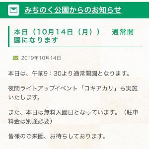 コキアカリ最終日!