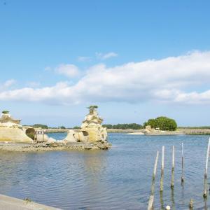 今年の県内での海水および湖水浴場開設