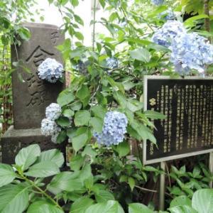 成覚寺の石仏(新宿区新宿)