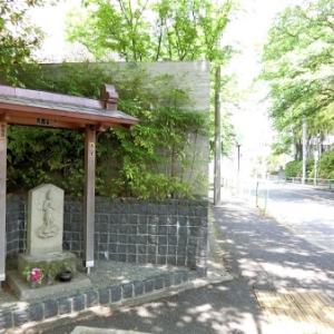 南蔵院通りの庚申塔(練馬区中村南)
