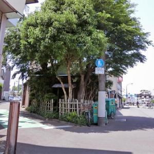 貫井二丁目の庚申塔(練馬区貫井)