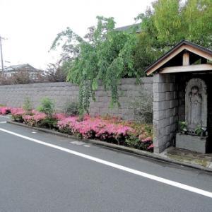 下島家の地蔵尊(練馬区桜台)