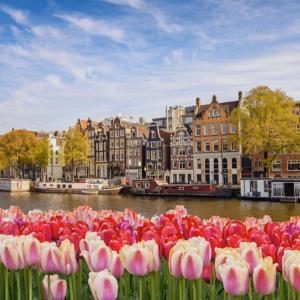 オランダ 移住相談について