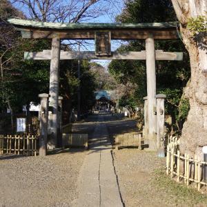 千葉 子安神社(1/13~14)