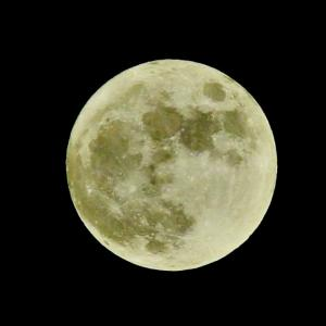 令和元年最後の満月(^_-)-☆