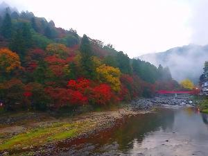 雨上がりの香嵐渓