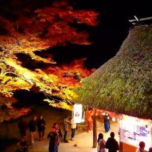 香嵐渓ライトアップ
