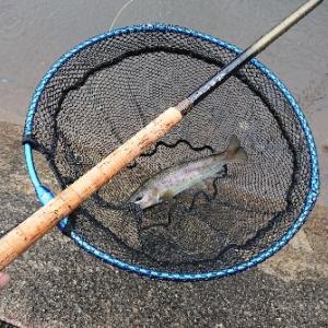 管理釣り場を楽しむ