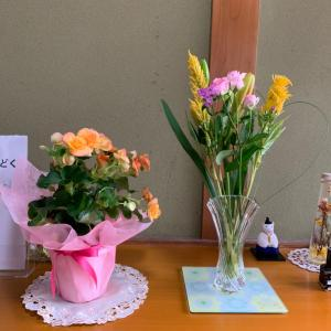 今日のお花は、例の。。。( ̄▽ ̄;)